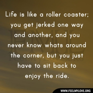 Life-is-like-a-roller-coaster1